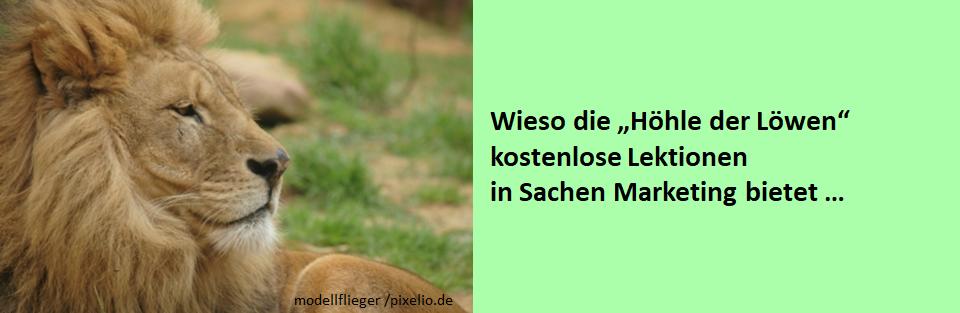 """D. Hering: Wieso die """"Höhle der Löwen"""" kostenlose Marketing-Lektionen bietet …"""